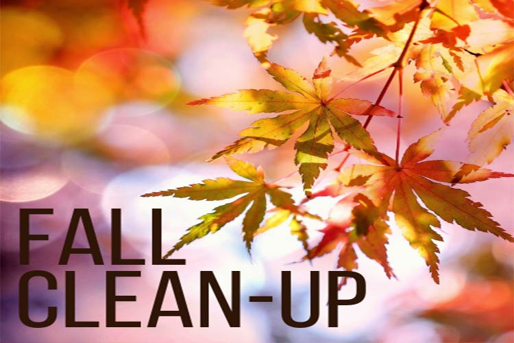 wb-fall-clean-up